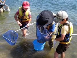 鶴見川河口干潟での魚とり