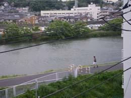 平常時の鶴見川(横浜市港北区綱島のTRネット事務局ベランダにて撮影)