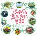 「マッカチ・カニカニ音頭」CD