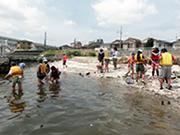 鶴見川河口干潟イベント・管理作業