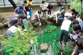 鶴見川流域学習支援 今年もたくさんの子どもたちが参加