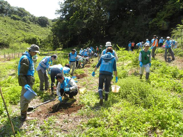 みんなで協力しあって、たくさんのエノキを植樹できました