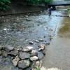 親水広場前の水の流れをゆるやかにするための水制づくり