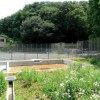 慶應義塾大学日吉キャンパス・まむし谷に防災調整池完成、ビオトープへ