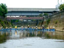 7/29(日)矢上川生きもの調査 ~はじめての川体験をサポート~