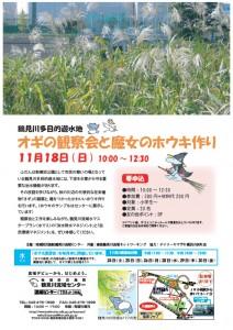 【イベント情報】 11月18日(日) 鶴見川多目的遊水地 オギの観察会と魔女のホウキ作り
