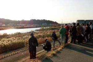11/24(土) 綱島高水敷クリーンアップと外来植物除去による植生管理 見学会