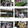 5/5 鶴見川流域2009『こども風のまつり』