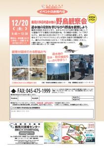 【イベント情報】 12月20日(土)鶴見川多目的遊水地の野鳥観察会