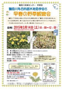 鶴見川多目的遊水地見学会と早春の野草観察