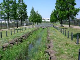 新横浜公園(水路)