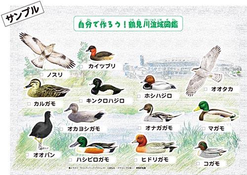 自分で作ろう!鶴見川流域図鑑(サンプル1)