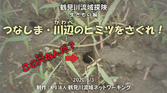 「鶴見川流域探険生きもの編 つなしま・川辺のヒミツをさぐれ!」イメージ